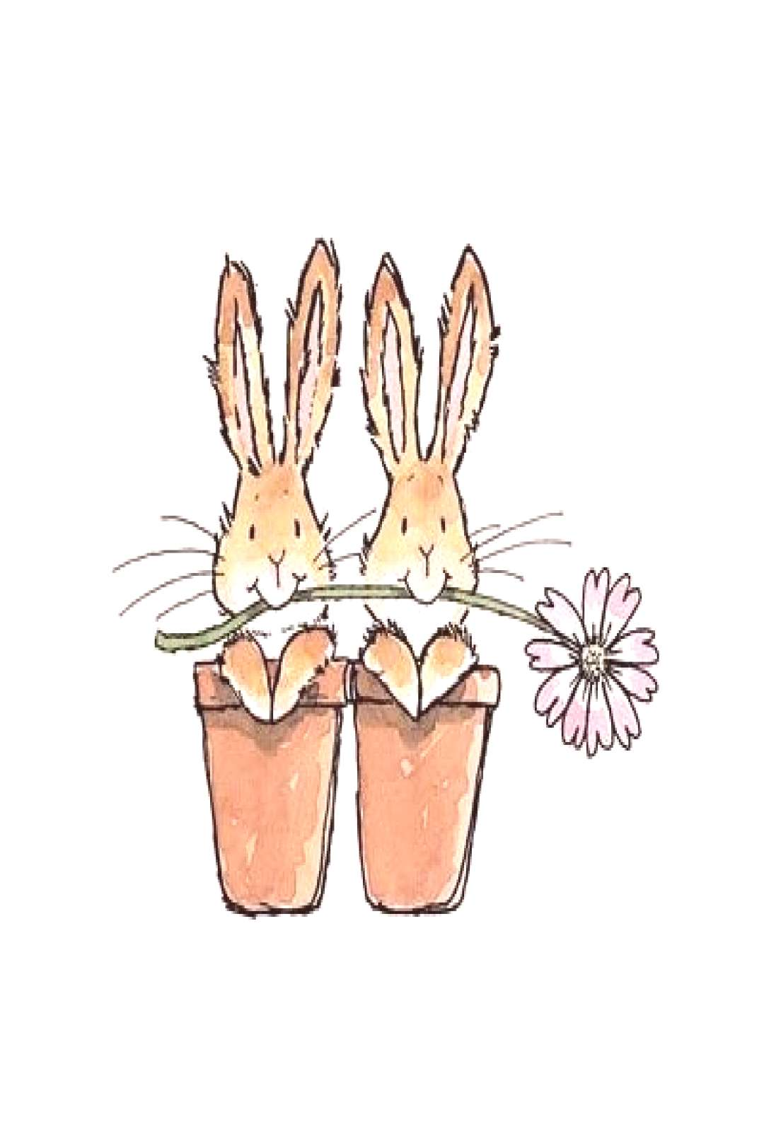 Cute Bunnies in Flower Pots illustration#bunnies illustration cute witch